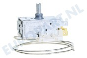 Electrolux 484000008686 Koelkast Thermostaat A13 0092K C046 Ranco ARG970