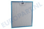 50248271004 Filter Metaal filter 300x253mm.