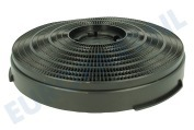 Ram program 2000 484000008610 CHF34 Afzuigkap Filter koolstof Model 34 -25cm-